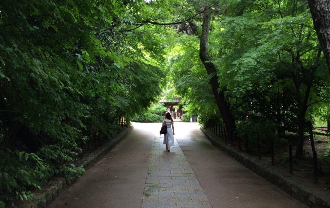 宇治奈良 | 景點行程安排以及中村藤吉抹茶餐